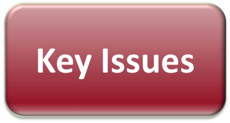 Some of the issues affecting the