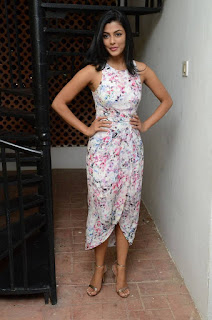 Anisha Ambrose Stills in Floral Dress at Run Movie Gummadikaya Function ~ Celebs Next
