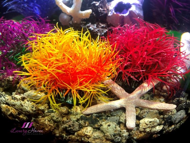 oase biorb tube aquarium aquatic colour balls