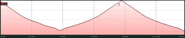 15 km Metlife Madrid