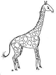 Universul Copiilor Planse De Colorat Girafa
