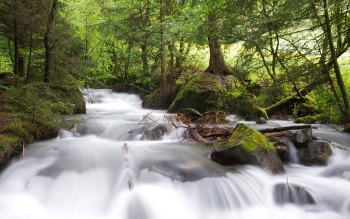 Wallpaper: River Stream and Cascade