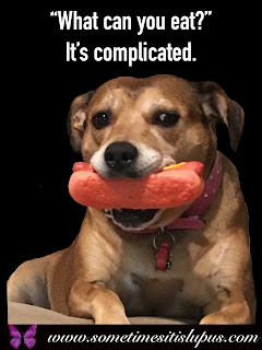 "Image: dog holding toy hotdog.  Text: ""What can you eat?""  It's complicated."