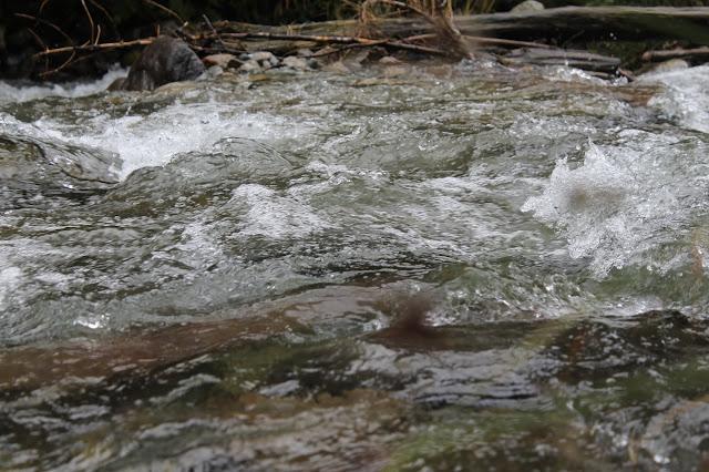 Wilde Wasser Rohrmoos Tipps Wandern mit Kindern Ausflugsziele Ausruestung Oesterreich Jules kleines Freudenhaus