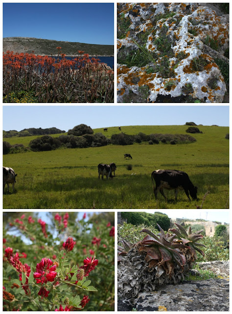 Menorca- Hiszpania
