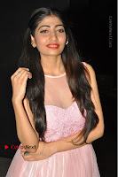 Actress Nidhisha Reddy Pos in Beautiful Pink Dress at Virus Telugu Movie Audio Launch .COM 0013.JPG