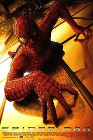 Spider-Man 1 (2002) Online HD Español / Latino