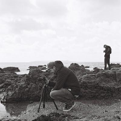 Rolleiflex f3.5