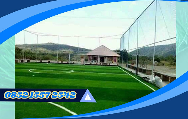 Harga Rumput Sintetis Futsal 2019 Murah