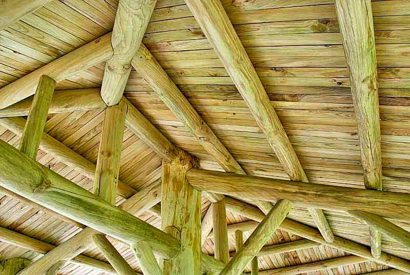 wooden ceiling,architecture,building,shade