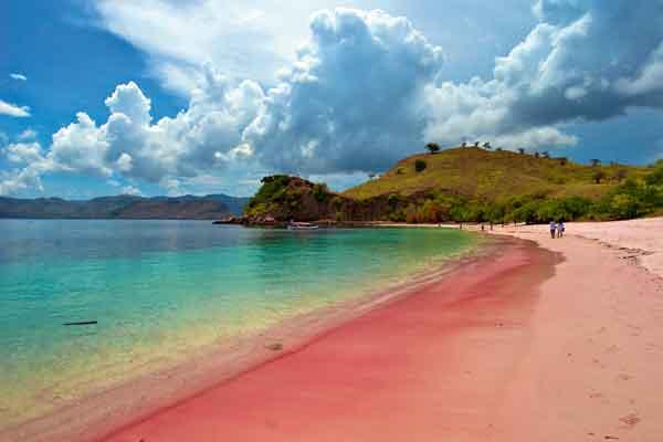 Mengenal Pantai Berpasir Merah Muda di Indonesia