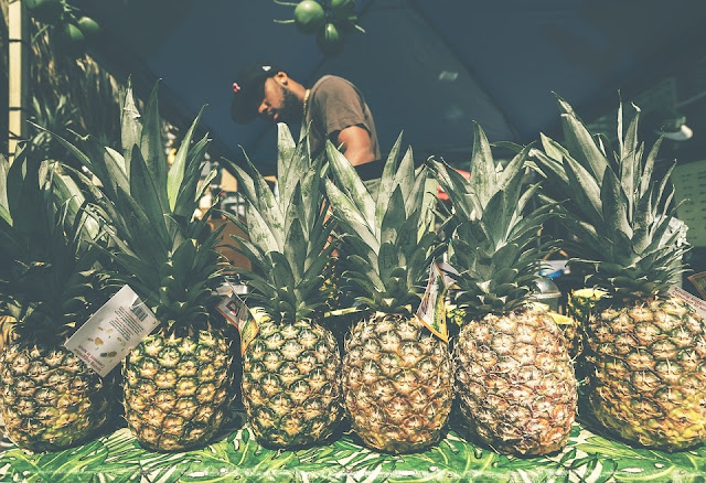 How to Start Pineapple Farming Business In Nigeria