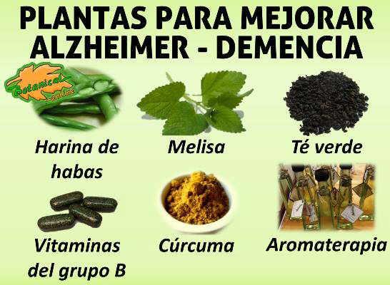 Blog de plantas se puede tratar el alzheimer o la demencia con remedios naturales - Alimentos para mejorar la artrosis ...