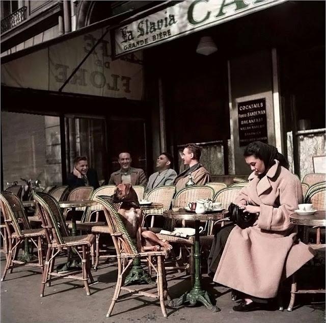 Cafe De Flore Paris Prix