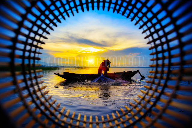 As seen through a fish basket