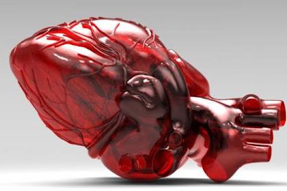 10 Fakta Jantung Yang Menciptakan Anda Tetap Bersyukur
