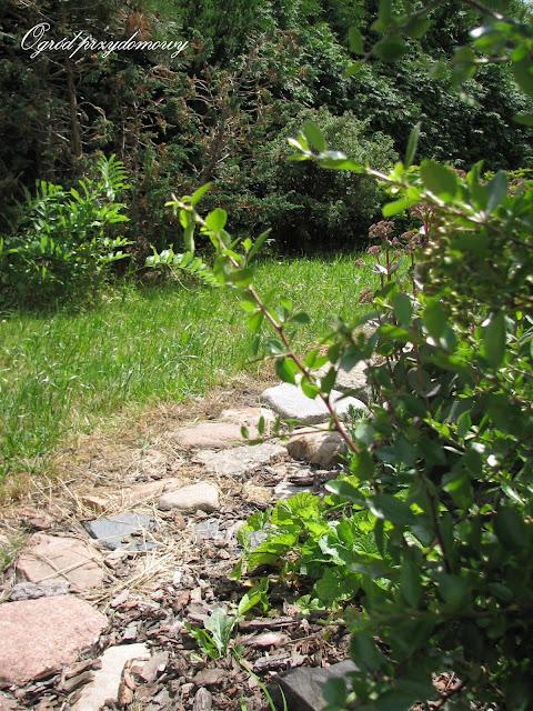 kamienie polne, ogród za grosze, kamienna ścieżka, ścieżka z kamieni polnych, ogród przydomowy