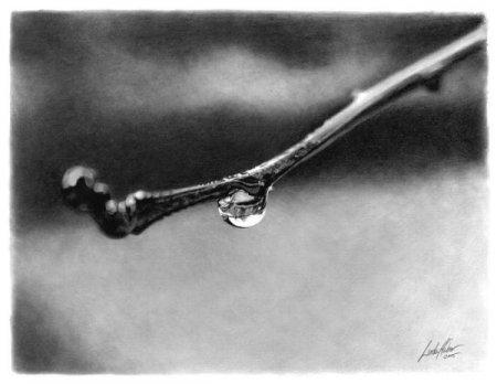 [Resim: beautiful_pencil_drawings_pics_04.jpg]