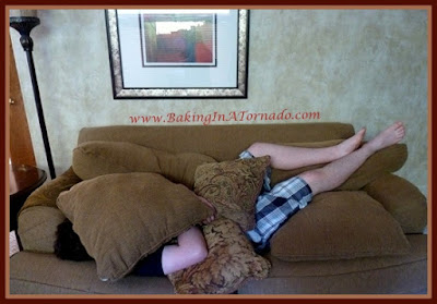 Fly on the Wall, a humorous look at family life. I'm fairly certain there's someone under there. | www.BakingInATornado.com | #humor #parenting