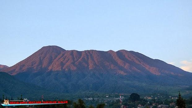 Seputar Kisah Misteri di Gunung Gede Pangrango