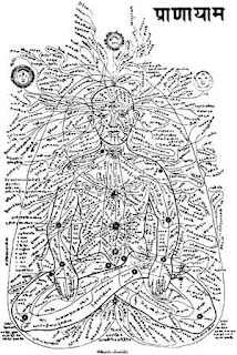 72000 Nadis and chakras run all over the body and intersect at the chakras