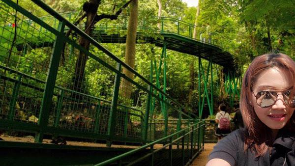 Kota Bandung kini Memiliki Forest Walk Terpanjang se-Asia Tenggara