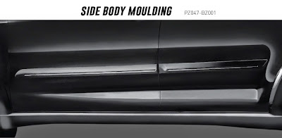 rush side body moulding