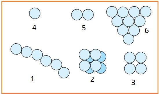 Soal Biologi Kelas 10 Tentang Jamur (Fungi) & Kunci Jawaban