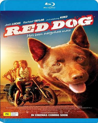 Download Filem Polisse 2011 Bluray Red Dog 2011 BRRIp 525MB Free Movie Downloads Movies For Free with x