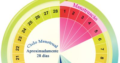 calcular periodo fertil ciclo