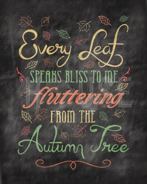 every+leaf+autumn+bliss - Every Leaf Speaks to Me
