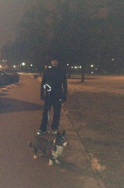 biba, yuma, twiggy, spacer, las, bieganie z psem, z psem w parku, biegaj z psem, bieganie, jogging