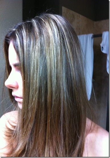 Going Quot Subtle Quot Ombre What S Next For My Hair Veronika