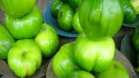 Nutritional contents of garden egg