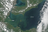 The sickly green color marks a toxic algae bloom in the western part of Lake Erie in August, 2014. The bloom caused the city of Ohio to temporarily ban drinking water from the city supply, which is pulled from the lake. (Credit: NASA Earth Observatory) Click to Enlarge.