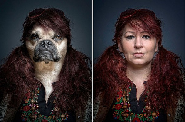 Funny Portraits of Dogs
