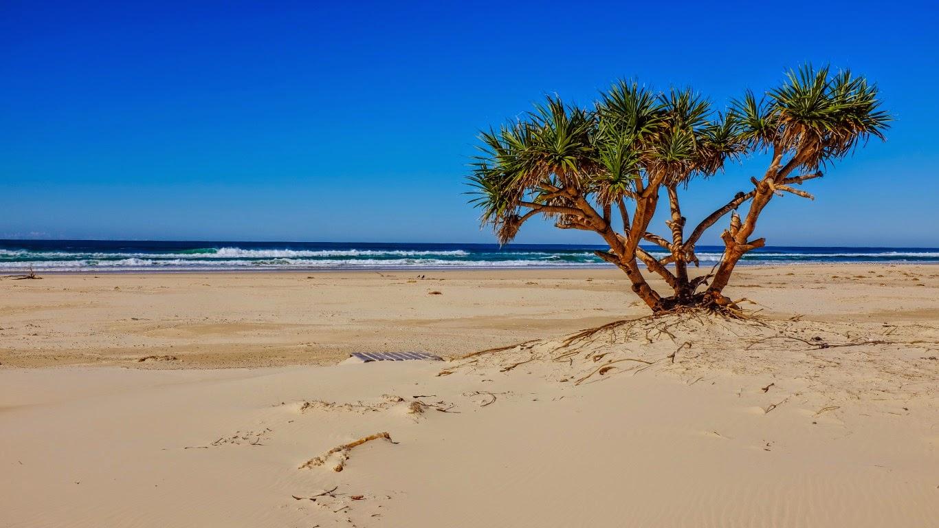 Meilleurs fonds d 39 crans paysages et fleurs fond ecran pc for Fond ecran plage gratuit