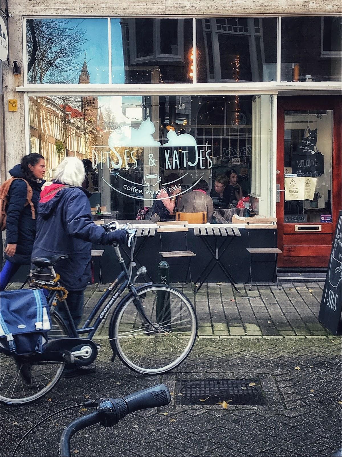 Ditses & Katjes The Hague Netherlands