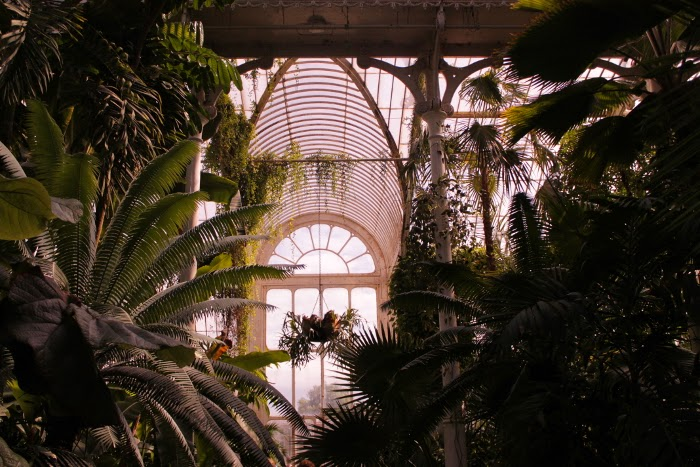 Kew Gardens // London // Lontoo // top things to do in London