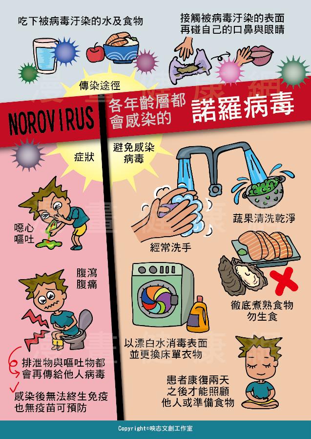 諾羅病毒的症狀與預防