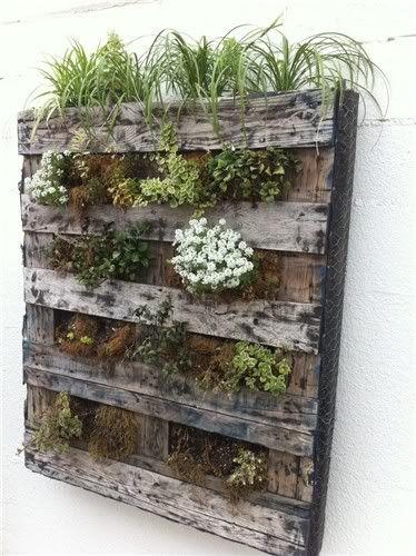 reciclar reutilizar y reducir jardineras verticales con palets - Jardineras Verticales