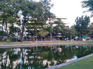 kolam ikan di tengah taman