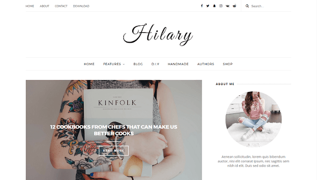 Hilary Blogger Teması