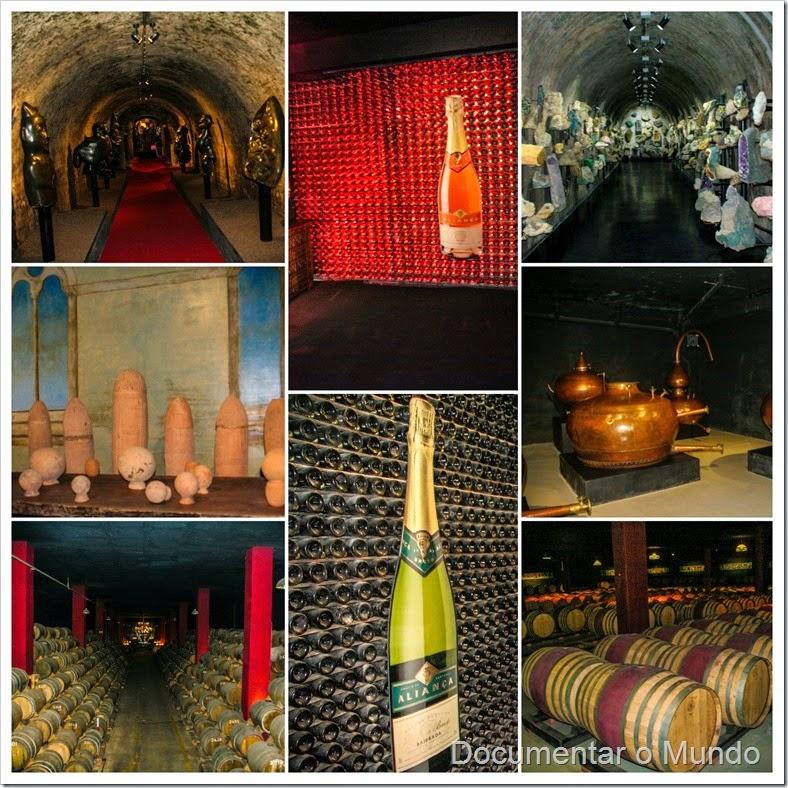 Aliança Underground Museum; Rota do Vinho da Bairrada; Enoturismo; Rotas do Vinho; Coleção Berardo