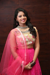 Geethanjali sizzles in Pink at Mixture Potlam Movie Audio Launch 036.JPG