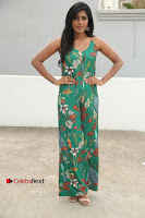Actress Eesha Latest Pos in Green Floral Jumpsuit at Darshakudu Movie Teaser Launch .COM 0024.JPG