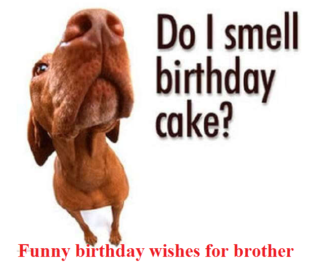 Quotes showing Funny birthday wishes for brother
