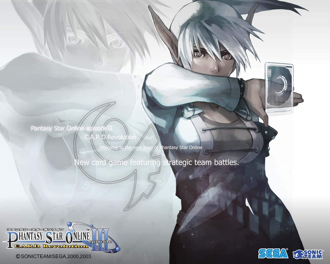 Phantasy Star Online Wallpaper: Who Wants To Vote For The Hottest Pixelated Beauty In