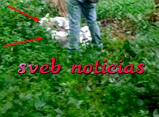 Joven reportado como desaparecido fue hallado ejecutado en Acayucan Veracruz