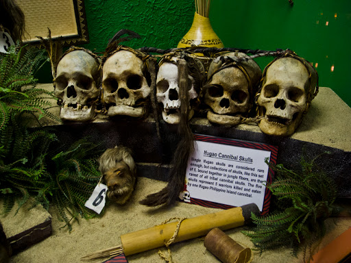 Cannibal Skulls at Ripley's Believe it or Not - Wisconsin Dells